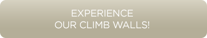 EXPERIENCE-OUR-CLIMB-WALLS-2